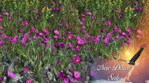 "Jan.2021 - Flink's ""New Dawn"" SALE"