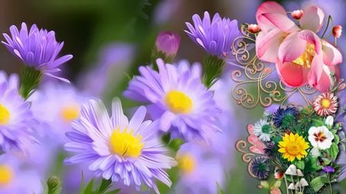 May.2021 - Blooming Days SALES - Saturday 15th - Sunday 16th