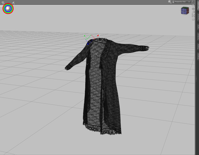 1 Pose Garment in DS.jpg